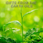 Gifts From The Earth Oils