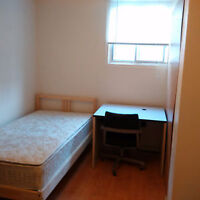 $15/day One bright room on Walk out basement in February only