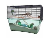 Large Pets at Home Gerbilarium with bottle, bowl and wheel