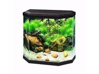 Fish Tank for sale £30 ONO