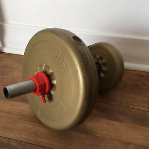 Poids haltères weight lifting dumbbell two 25 lb gym barbell