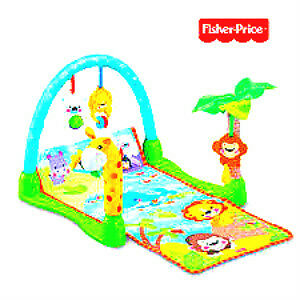 **********Fisher-Price play mat**********