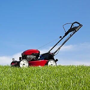 Mowing clients/business