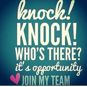 In need of reps in your area - want to make some MONEY? Kingston Kingston Area image 1