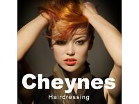 Young Hairdresser in Bruntsfield requires models for cuts, colours and blow drys.