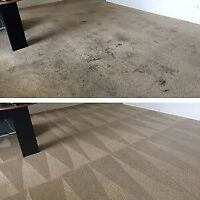 24 Hour Carpet Cleaning