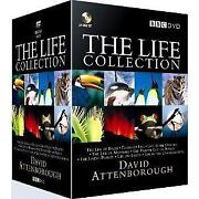 David Attenborough Life Collection