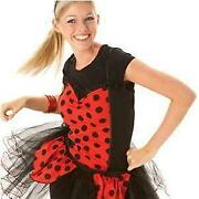 Ladybird Fancy Dress