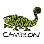 camelon-japan