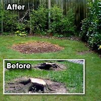 Stump removal lowest priced