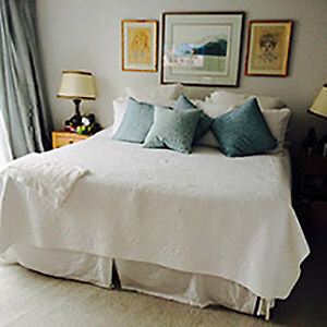 LOOKING FOR A ROOMMATE! North Shore Greater Vancouver Area image 3