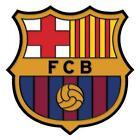 FC Barcelona Pin