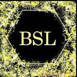 BSL-Eclectic Finds