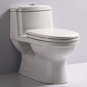 DUAL FLUSH TOILET ONE PIECE TOILET PREMIUM 647 285 2700