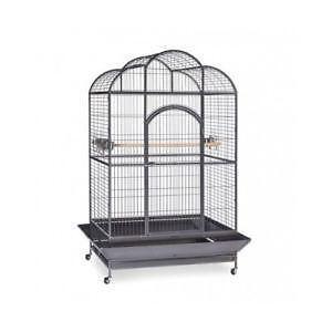 Vintage Bird Cage Stand