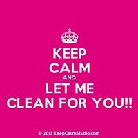 house cleaner / spring clean up help at your service!