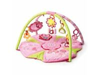 Bright Starts Pretty in Pink Supreme Play Gym
