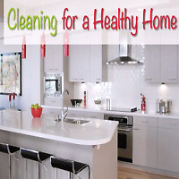 Cleaning Lady For Your House