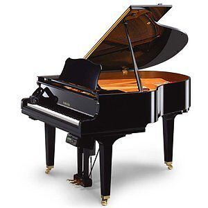 **Professional Piano Movers** 902 440-4402.