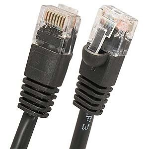 """100"""" Cat6 Network Cable"""