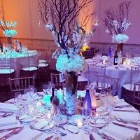 NATURAL MANZANITA BRANCH CENTERPIECE- WEDDING / EVENT - BUY/RENT