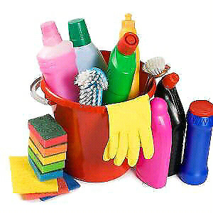 do you need a cleaner to come in asap 20-25 a hr