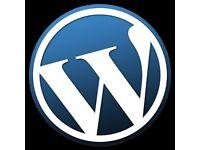 Website Design Person / Company
