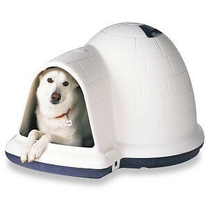 Igloo Shaped Outdoor Dog House (1 year old, rarely used)