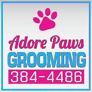Adore Paws Grooming!!