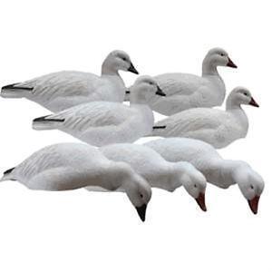 Canada Goose coats replica price - GOOSE Decoys   eBay