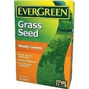 Grass Seed 1kg