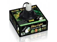 NEW Exo Terra Glow Light halogen clamp lamp and glow
