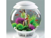 Biorb 30 Tropical Halo Acrylic Fish tank with Stand