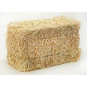 Straw small squares