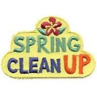 LAWN, YARD, SPRING CLEAN - dog poop, leaves, branches, gardens