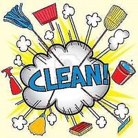 PRO CLEANING - HOMES, WINDOWS, CARPETS, CARS, DECKS, YARDS