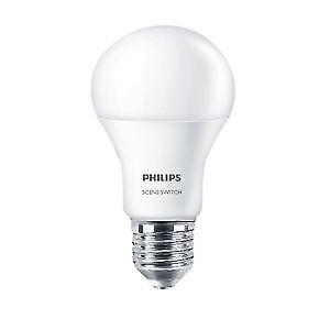 LED Bulbs - A19 Standard Base