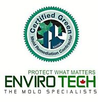 Certified Mold/ Mould Remediation 705 313 6321
