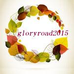 gloryroad2015