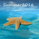 summerstore2016