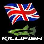 Killifish UK