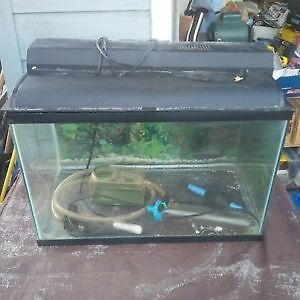 Fish Tank, with everything you need