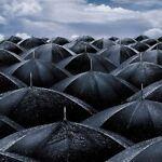 rainydayentertainment
