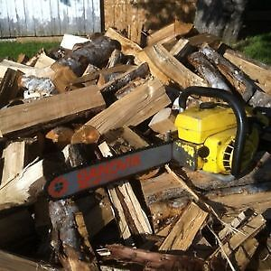Looking for older mcculloch ChainSaws