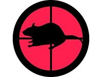 Free Pest Control of Pigeons, Rabbits, Gray Squirrels, Crows, Magpies or other Corvids