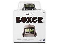 Interactive Boxer Robot