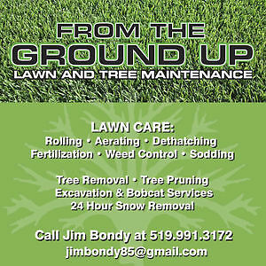 FROM THE GROUND UP LAWN AND TREE SERVICE Windsor Region Ontario image 1