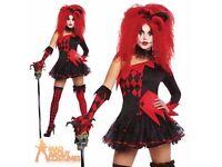 Jesterina costume (Harley Quinn)