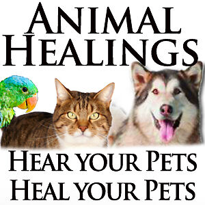 Mobile Pet & People Holistic Healing Winnipeg
