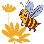 Bienenschwarmmm